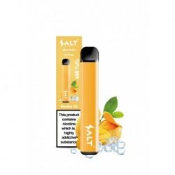 Ē-Cigarete Ice Mango 20mg./ml LV